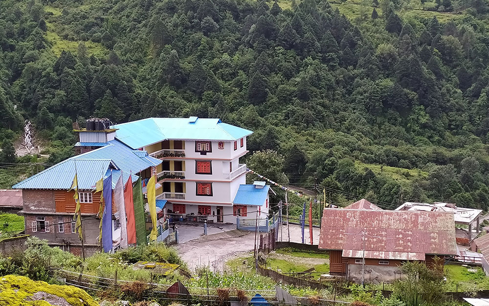 Delight Royal Lachung